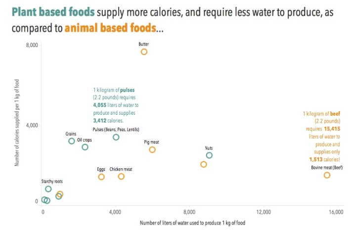 Calories x Water.jpg